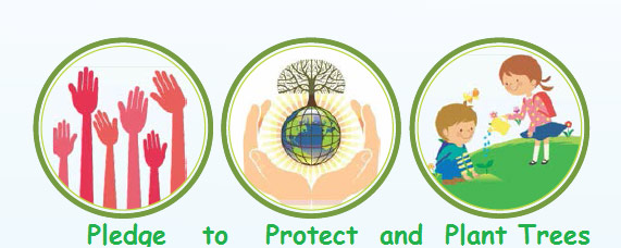 Save water · 3rs of waste management · 3 ps of afforestation